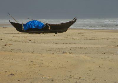 GoaIndia_MeetingClimateHealth-yq1611