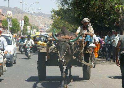 India_Rajasthan2007_2-1f1ut3l