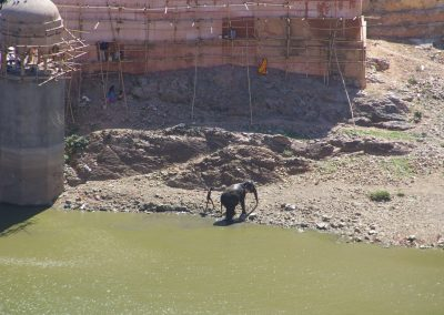 India_Rajasthan2007_4-2ac475j