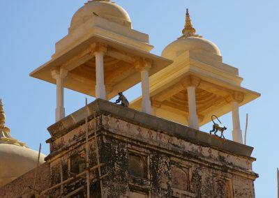 India_Rajasthan_2007_5-18fu18y