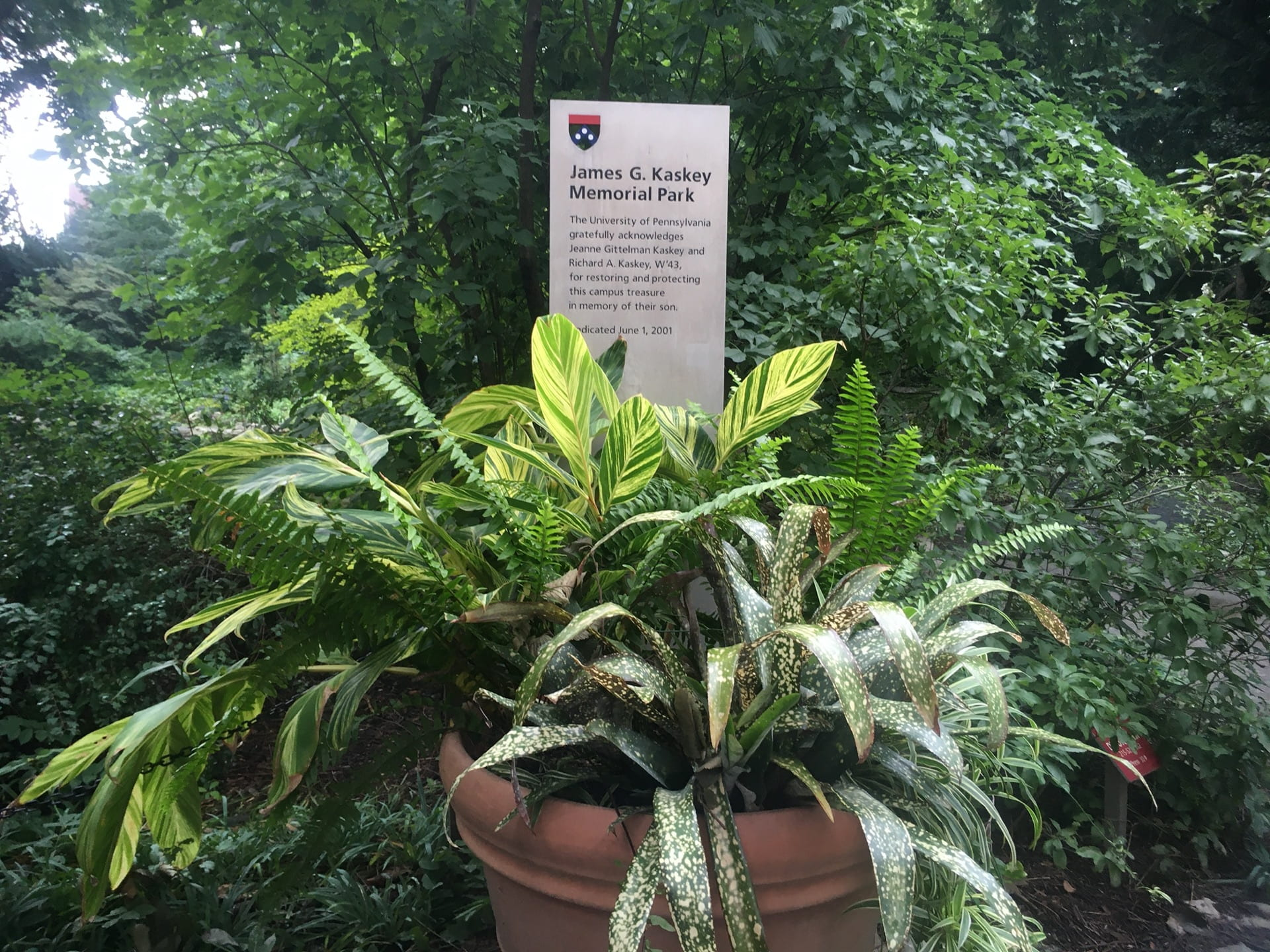A tropical container display at the entrance to the Pond.