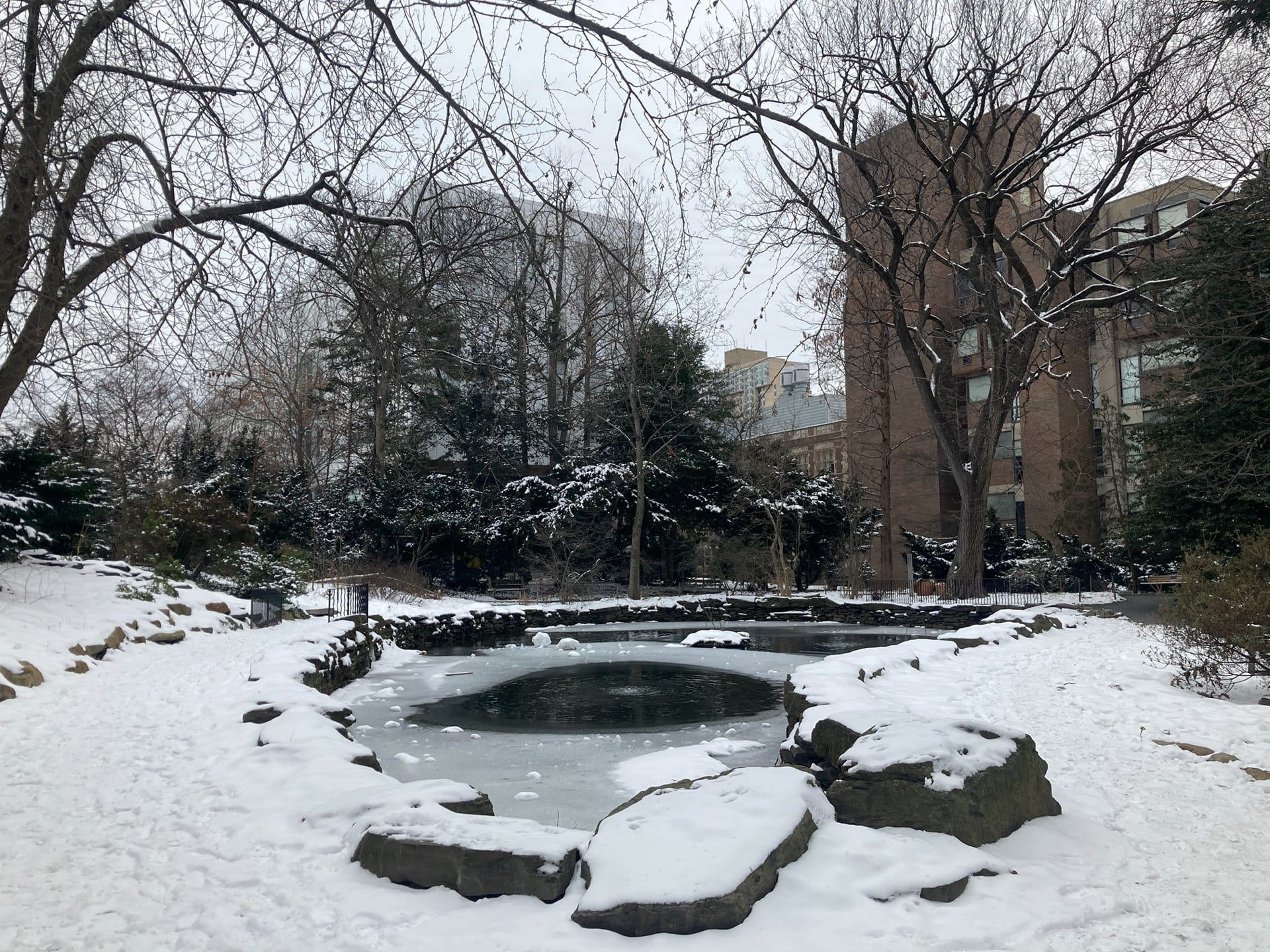 A narrow view of the BioPond, covered in snow.