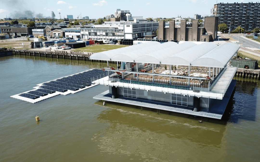 Is Floating Architecture a Gimmick or a Serious Way to Address Sea Level Rise?