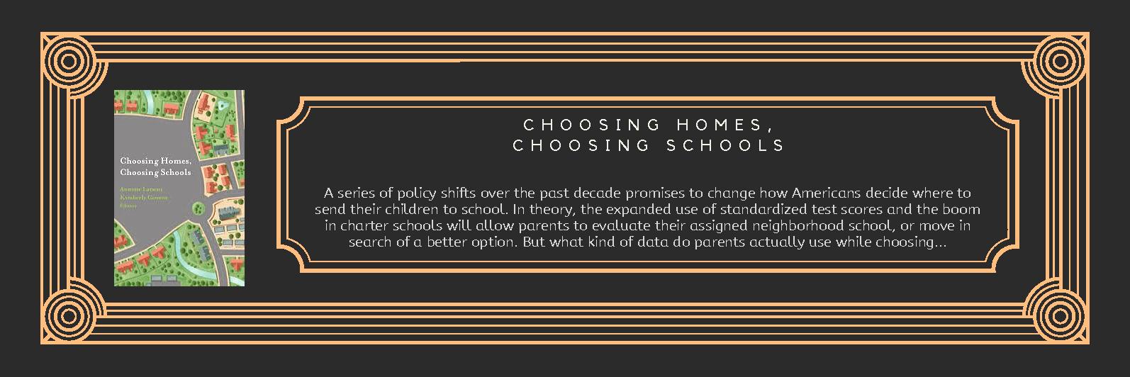 Book Choosing Homes Choosing Community