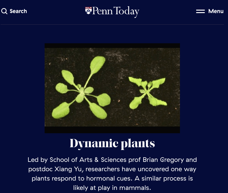 Read about our recently published paper featured on Penn Today