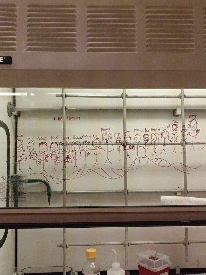 Drndić Laboratory