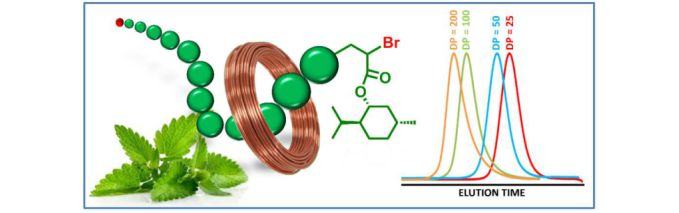 SET-LRP Applied to Hydrophobic Biobased Menthyl Acrylate