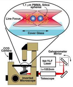 Light Forces / Laser Tweezers