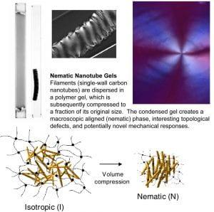 Nematic Nanotube Gels figure