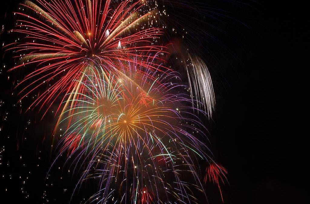 Why are dogs afraid of fireworks?