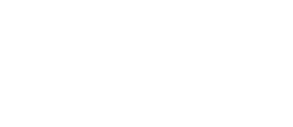 Political Economy of Gender