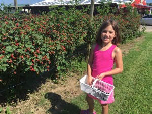 Abby Picking Strawberries