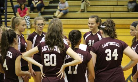 Ladynecks Sweep Lady Eagles in District Contest