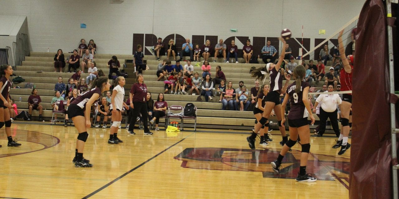 Ladynecks defeat Harmony in district match