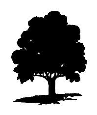 wo oak