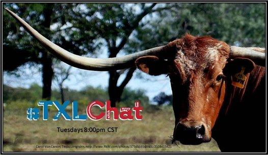 #txlchat image