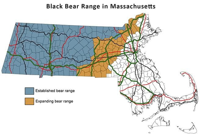 Map of Massachusetts showing established and expanding bear ranges