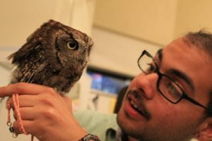 Omar looking at an owl