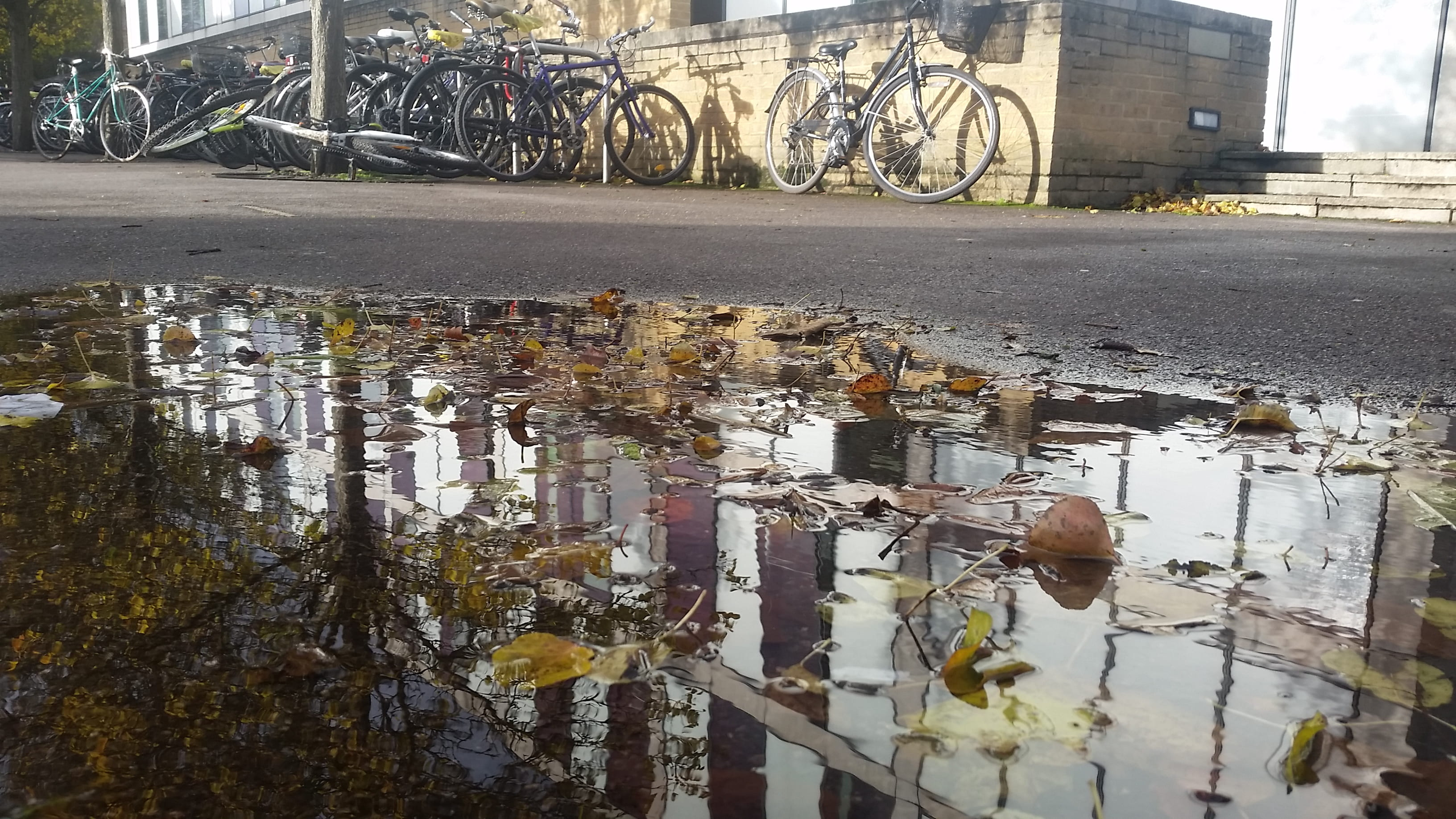 Parked bicycles beside a puddle near the Social Sciences Library, University of Oxford