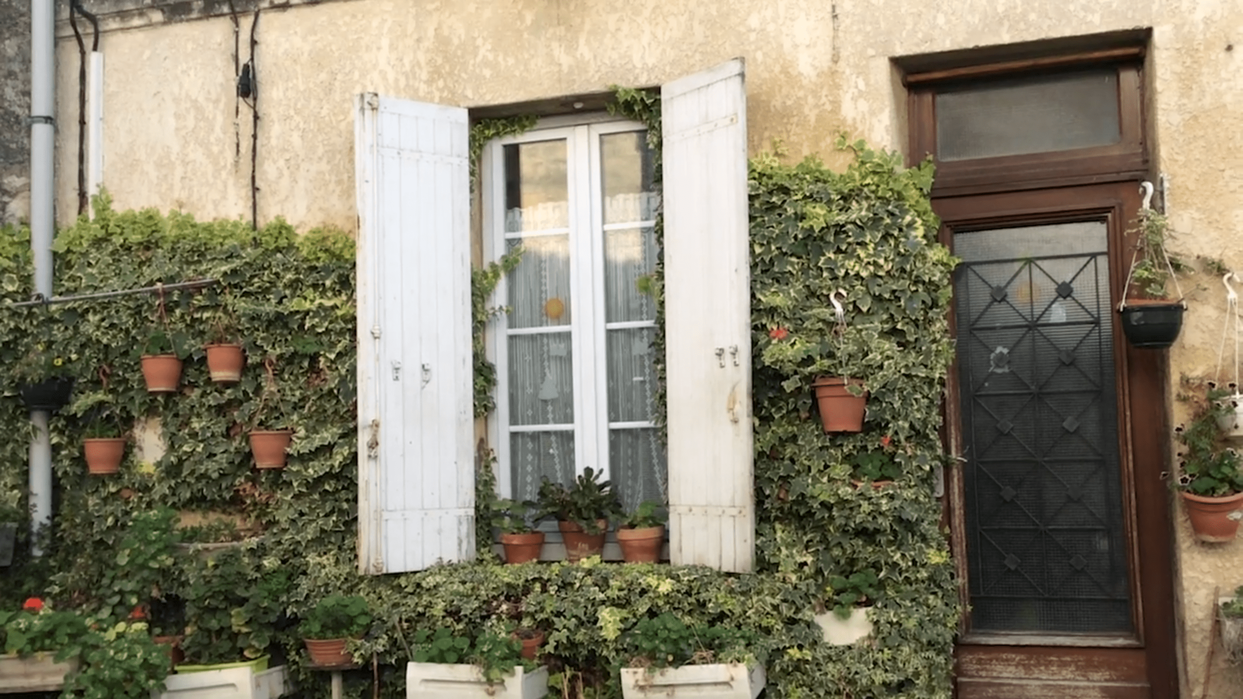 Side of house with large white window, open shutters, covered in ivy