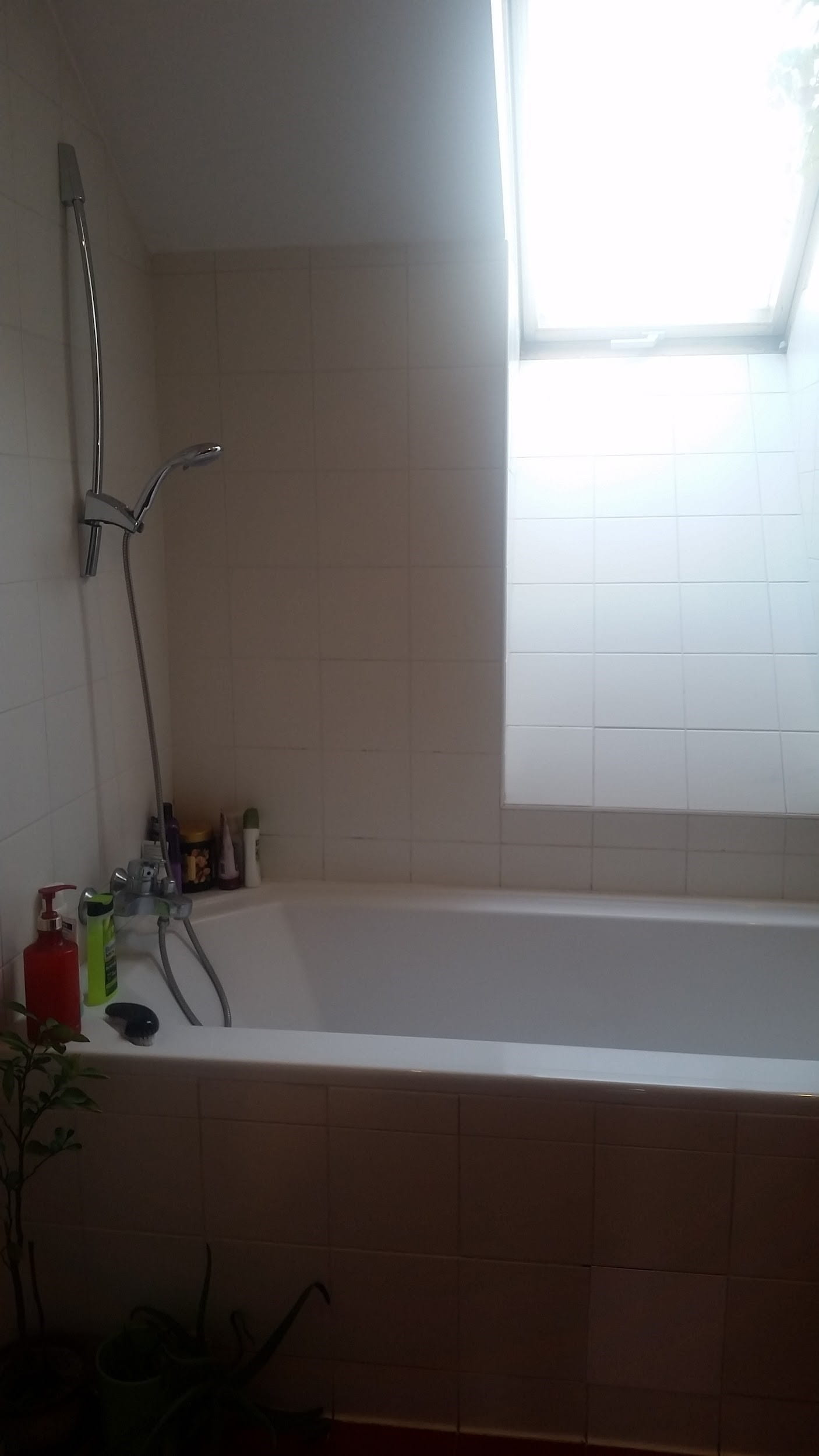 Bathtub with shower head in Czech Republic