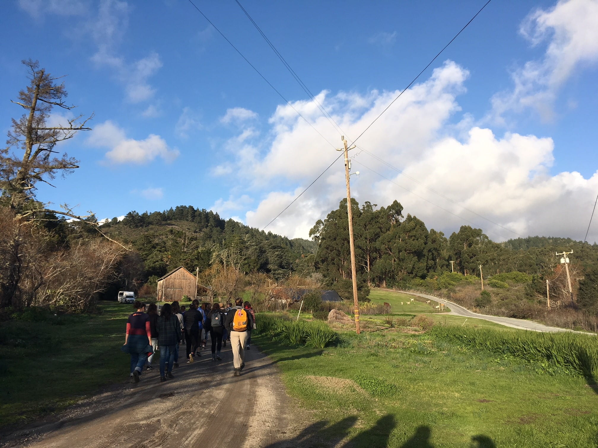Students walking along path on organic farm