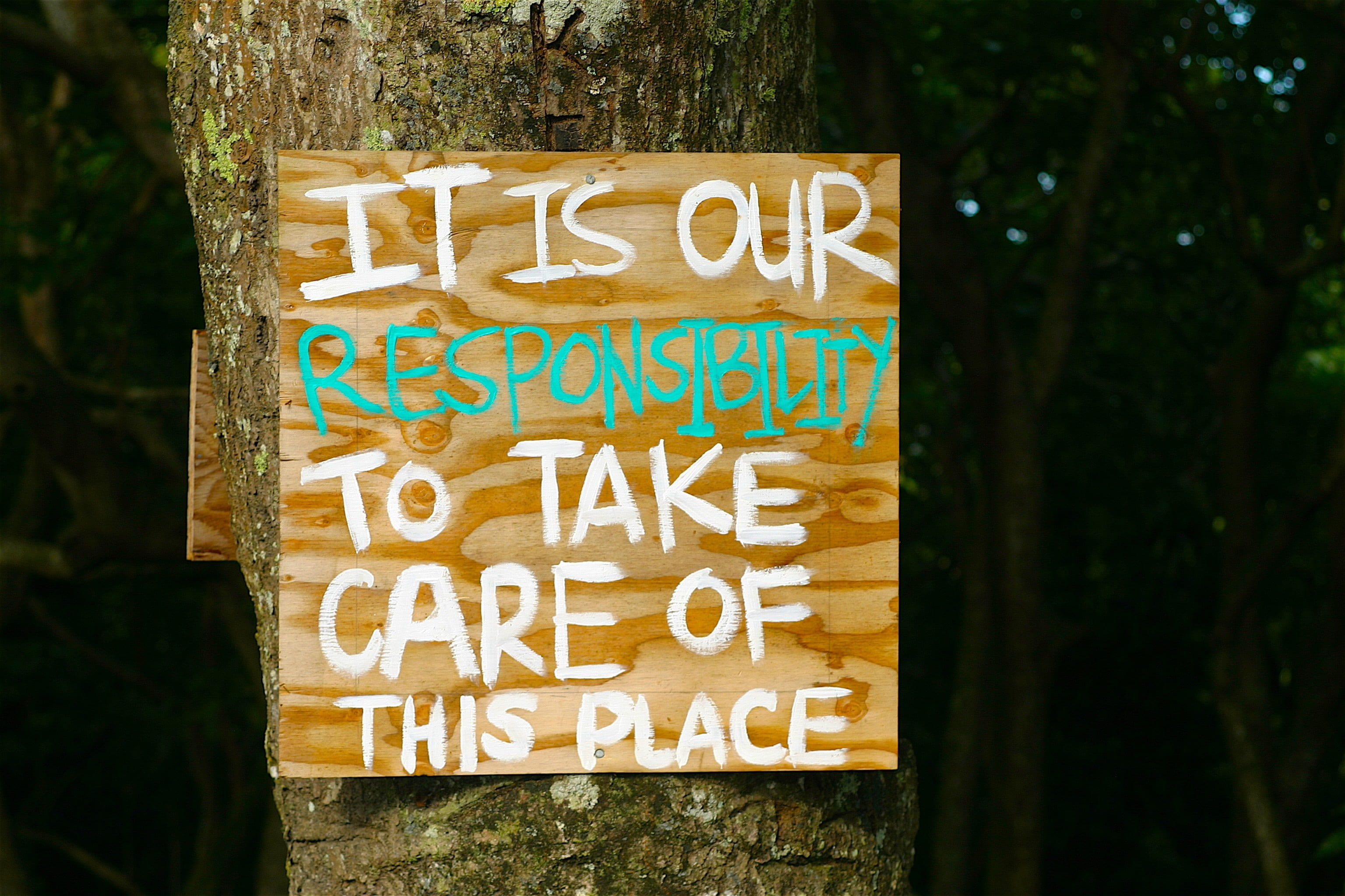 "Wood sign with words painted in white and green reading, ""It is our responsibility to take care of this place."""