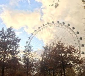 A view of The London Eye Ferris Wheel through tress
