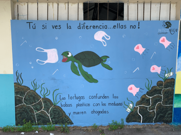 "A mural outside of a school. The top line reads: ""You see the difference, they don't!"". The text at the bottom: ""Turtles confuse plastic bags with jellyfish and die of suffocation."""