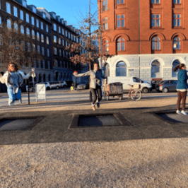 A semester cut short: The main takeaways from my time in Copenhagen