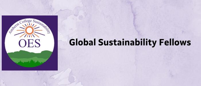 Sustainability Fellows