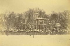 """Prouty, Charles, """"Evergreens in winter,"""" Digital Amherst, accessed June 16, 2017, http://www.digitalamherst.org/items/show/733."""