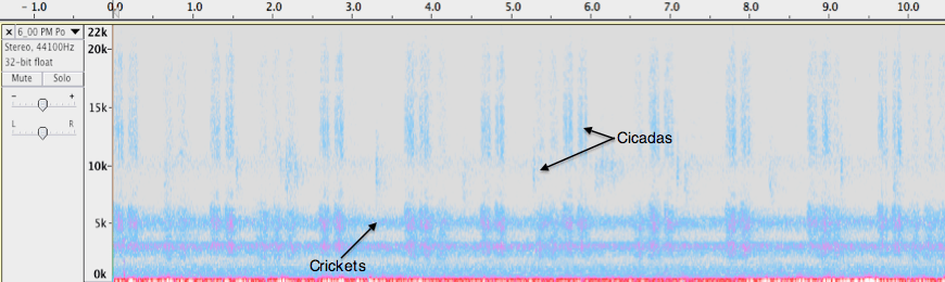 Spectrogram of Lake Bray Dusk recording