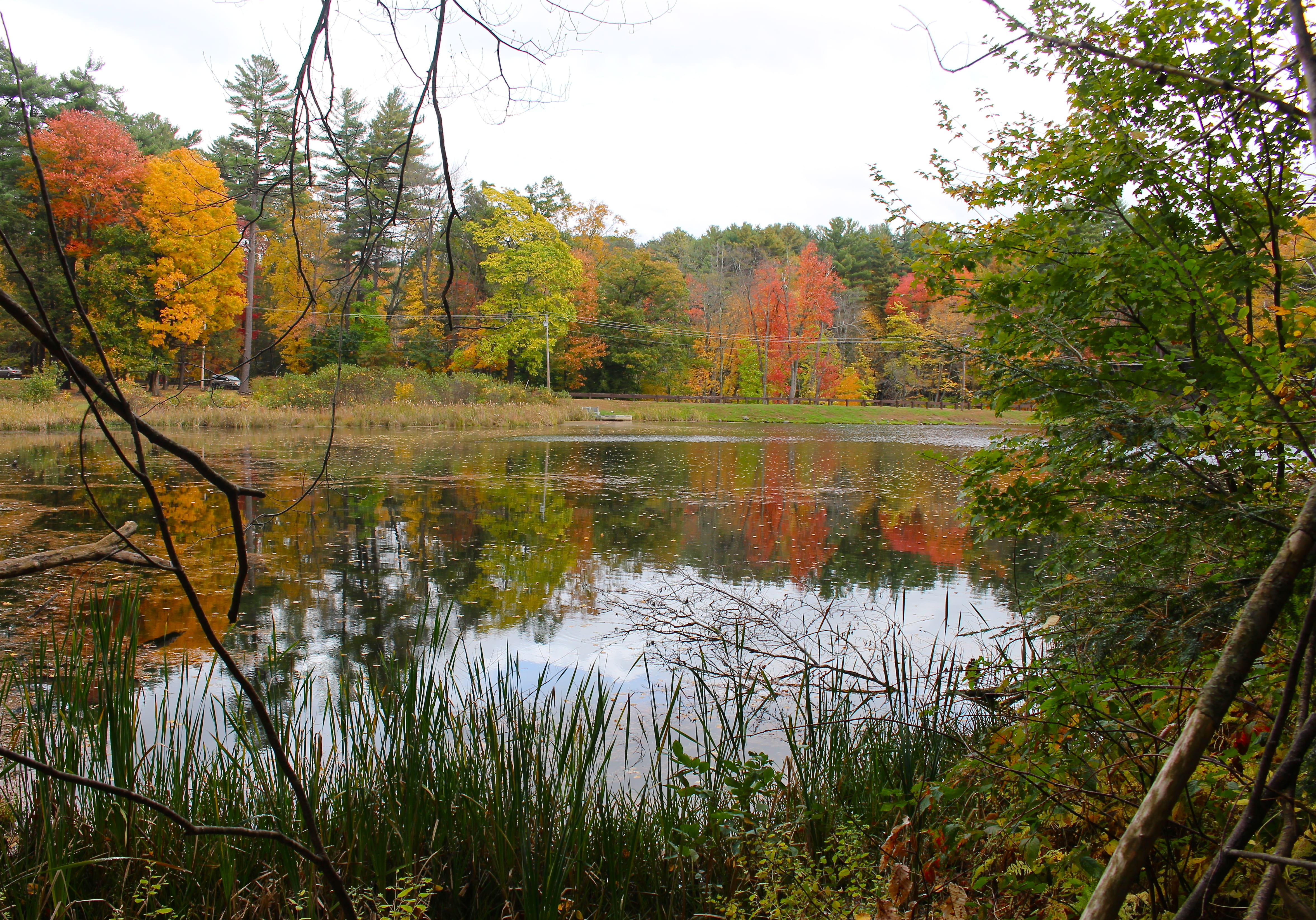 Lake Bray in Autumn, Mount Tom State Reservation, Easthampton, MA
