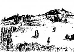 Drawing of a hilly landscape with some trees dotting it
