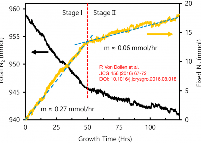 A new system for sodium flux growth of bulk GaN.Part II: in situ investigation of growth processes