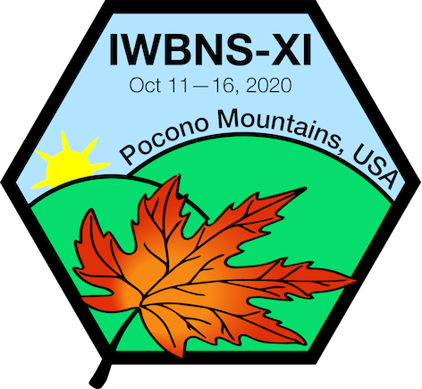 Conference Chair for IWBNS-XI