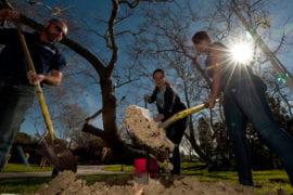 Olivia Grim, Tania Garcia and Rick Ternet planting a tree