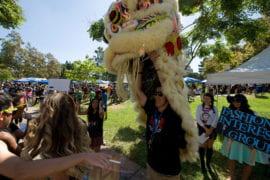 Lion dance at involvement fair