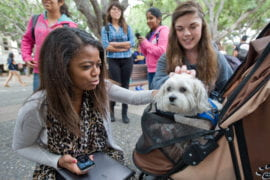 Amanda Quintero and Tawnie Speaker with therapy dog
