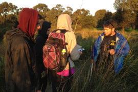 Students surveying plant diversity