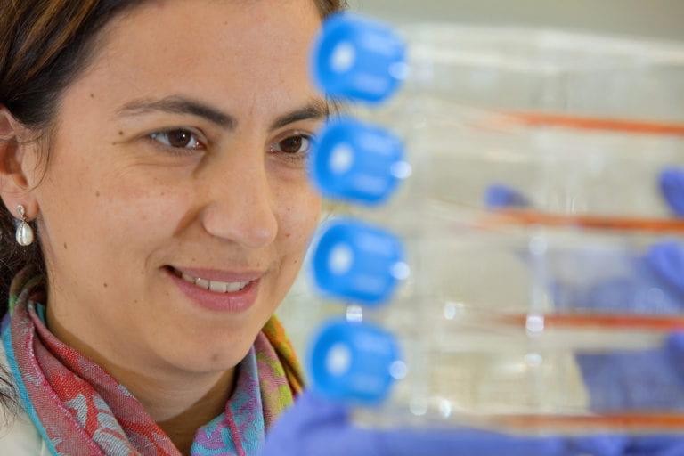 New front in fight against brain cancer