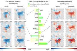 Graphs correlating ocean temperature with wildfires