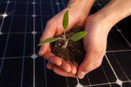 Business embraces sustainability