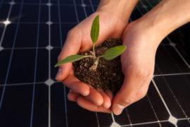 Business embraces sustainability