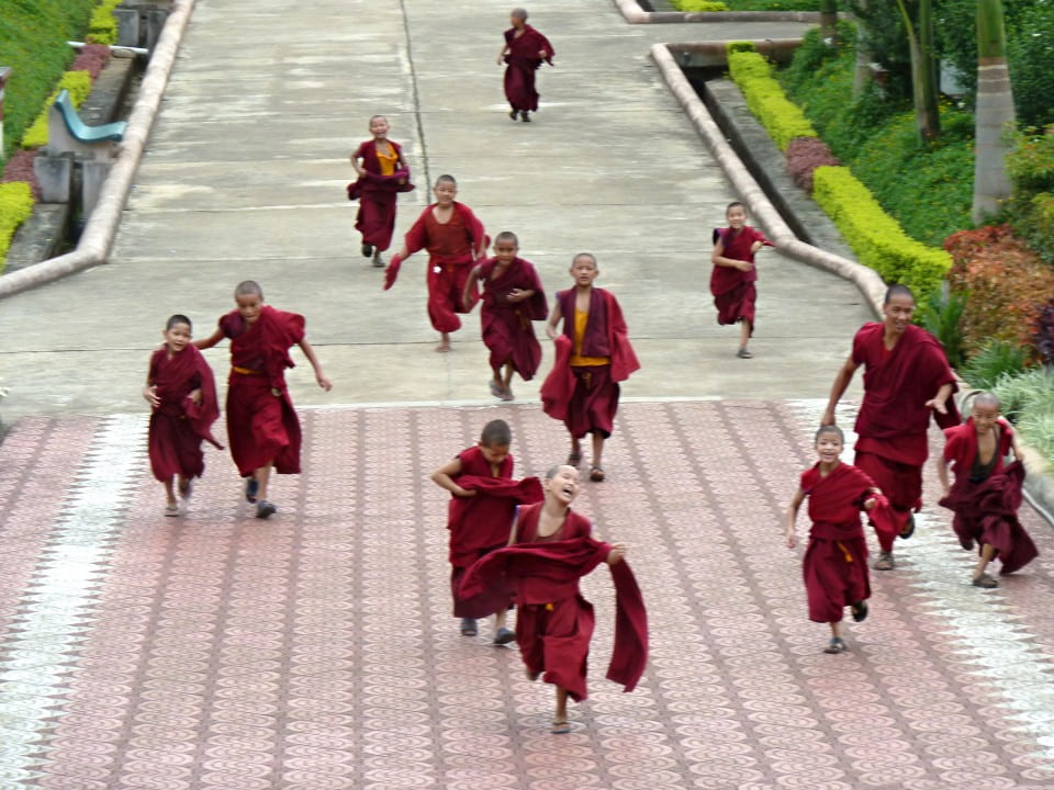 Tibetan monks at the Gaden Shartse Monastery in Mundgod, India