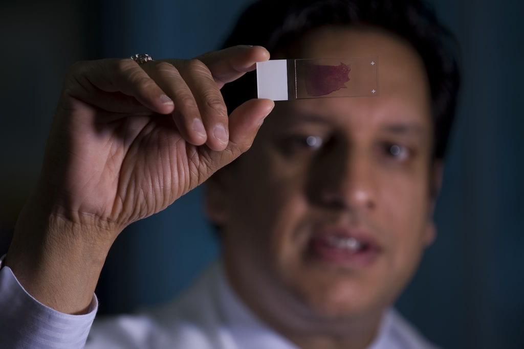Dr. Krishnansu Tewari