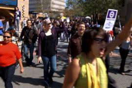 Free speech explored on HIPerWall