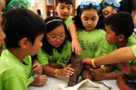 Gifted Students Academy nurtures young minds