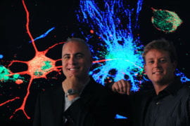 Neural stem cells offer potential treatment for Alzheimer's disease